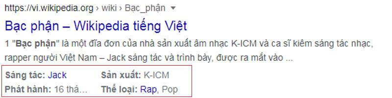 Rich Snippets Doan Ma Chi Tiet Google 2